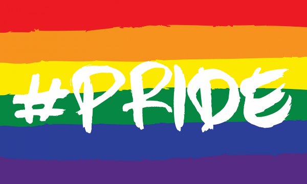 Design of the Rainbow Hash Pride 1500x900mm Flag
