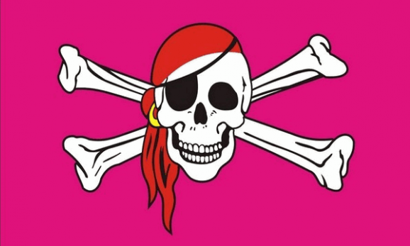 Design of the Pink Pirate 1500x900mm Flag