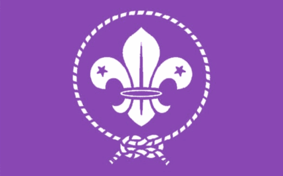 Flag image for Scout Purple International